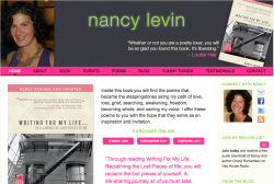 http_www-nancylevin-com_